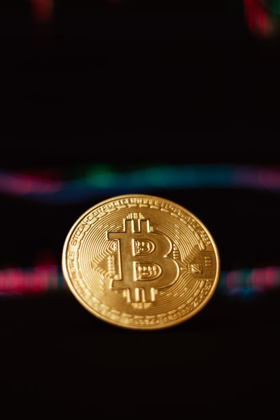 Which cryptocurrencies are you investing in?